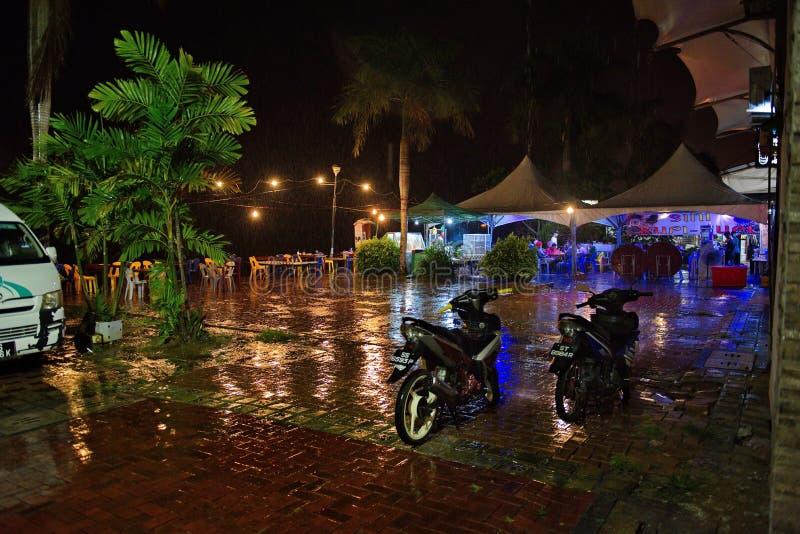 Attesa fuori dell'acquazzone tropicale fotografia stock libera da diritti