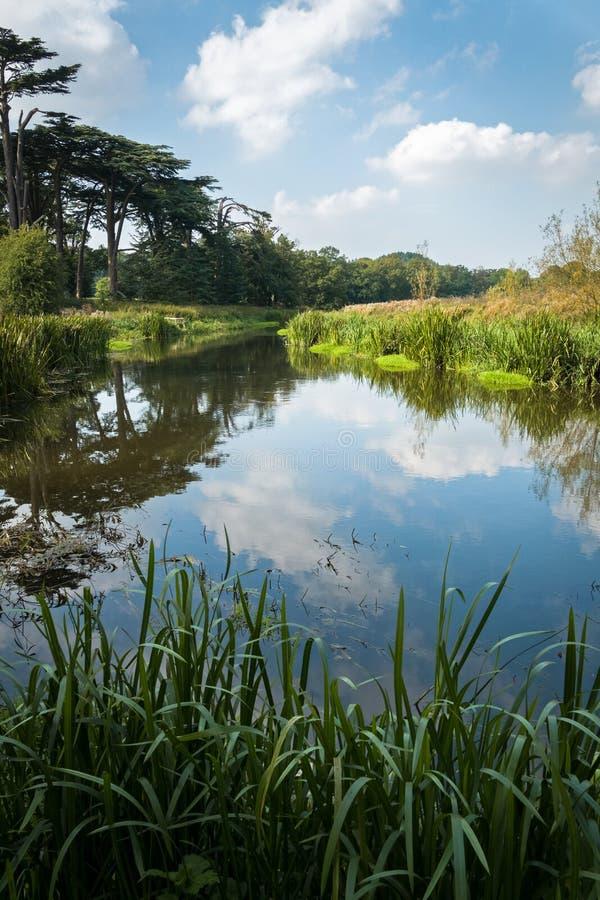 Attingham parkerar det engelska landsgodset arkivfoto