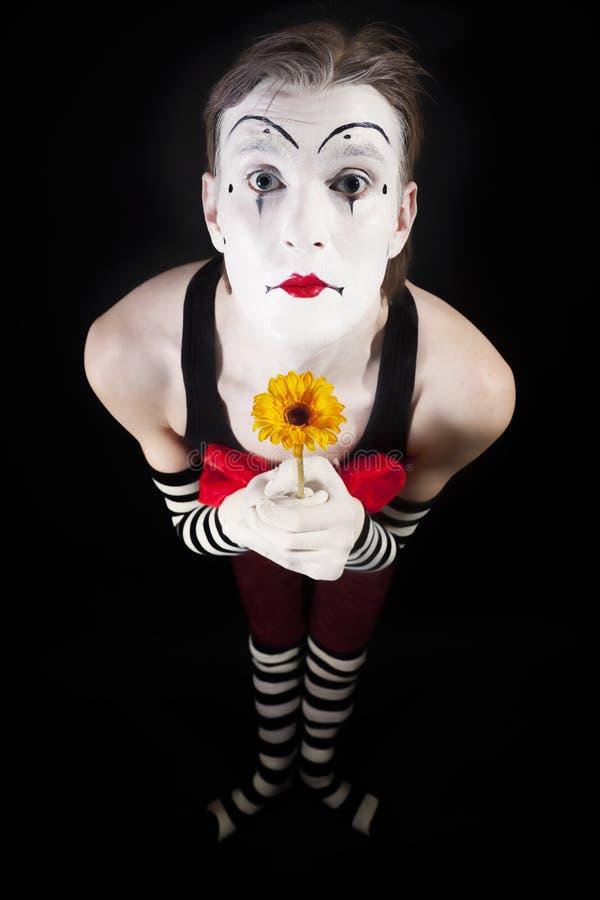 Attore di pantomimo dentro con i gerberas gialli fotografia stock