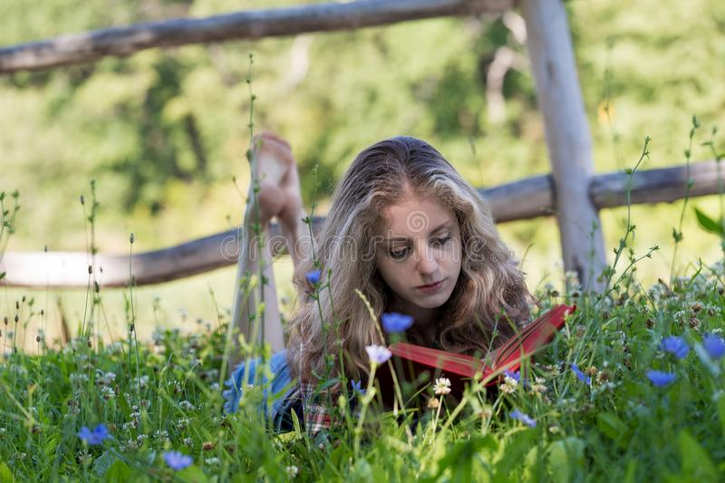 Attractive barefooted young woman with long curly hair is reading a book in a meadow stock photo