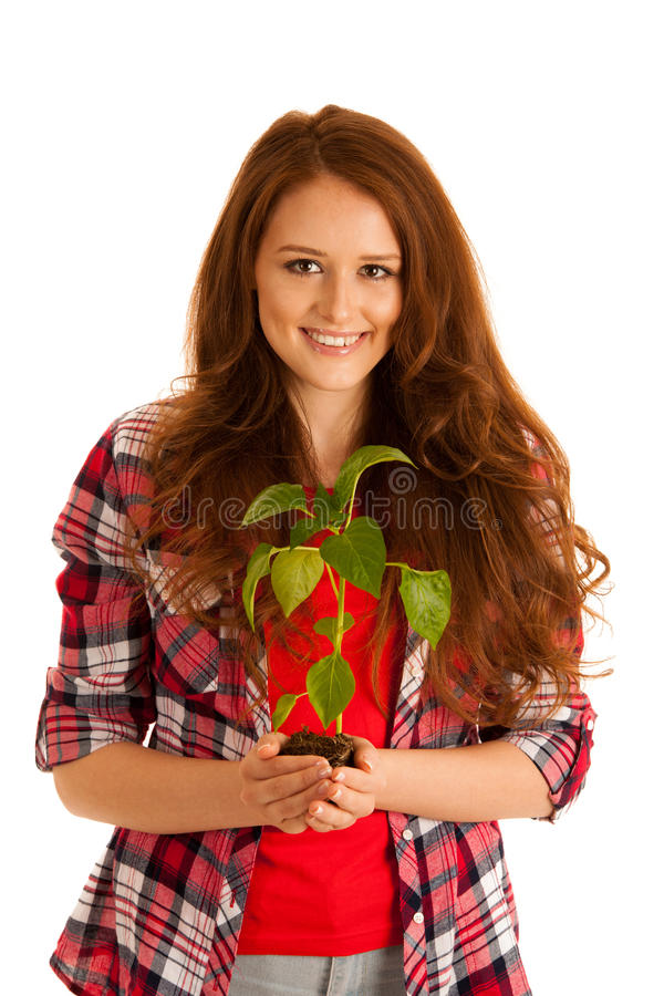 attractive Beautiful young woman holds seedling isolated over white background stock image