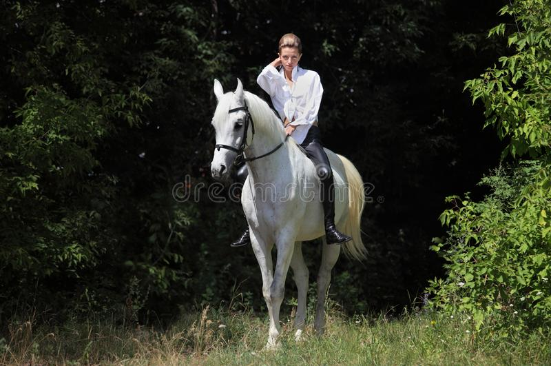 Attractive beauty equestrian girl bareback white horse dark woods portrait. Attractive beauty equestrian model girl riding bareback white horse royalty free stock image
