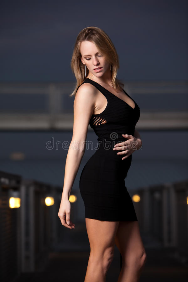 Download Attractive Blond Caucasian Fashion Woman Stock Image - Image: 23659531