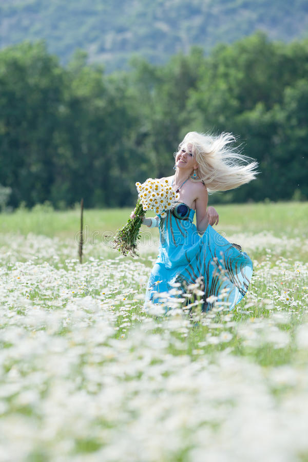 Attractive blonde in chamomile field. Young woman with bouquet of flowers walking through chamomile field stock image