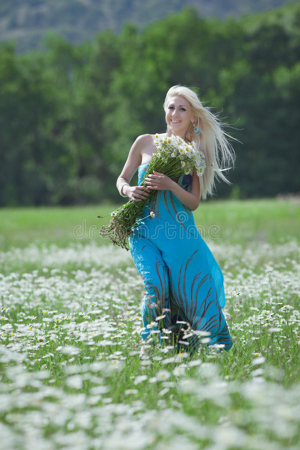 Attractive blonde in chamomile field. Young woman with bouquet of flowers walking through chamomile field stock photography