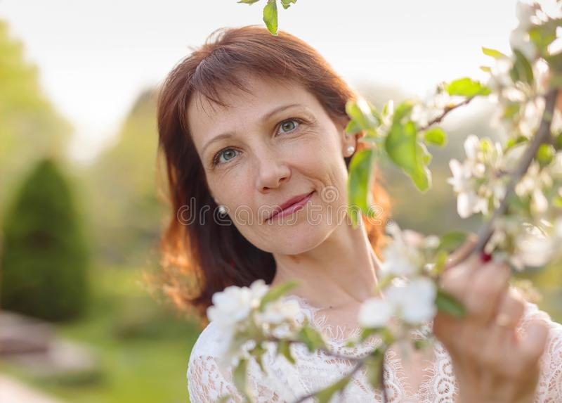 Attractive brunette in a white dress near a flowering Apple tree. Beautiful mature woman in the spring garden. An attractive brunette in a white dress near a stock images