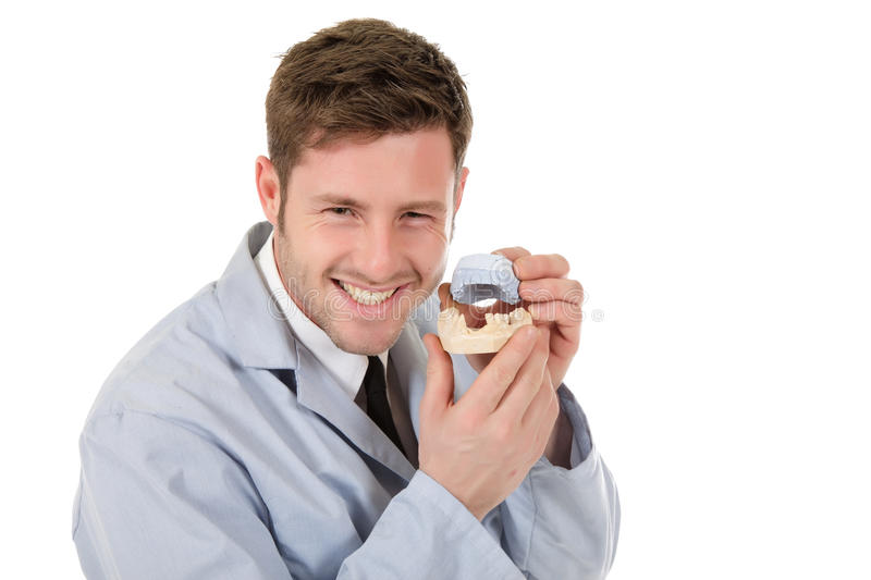 Attractive caucasian male dentist royalty free stock photos