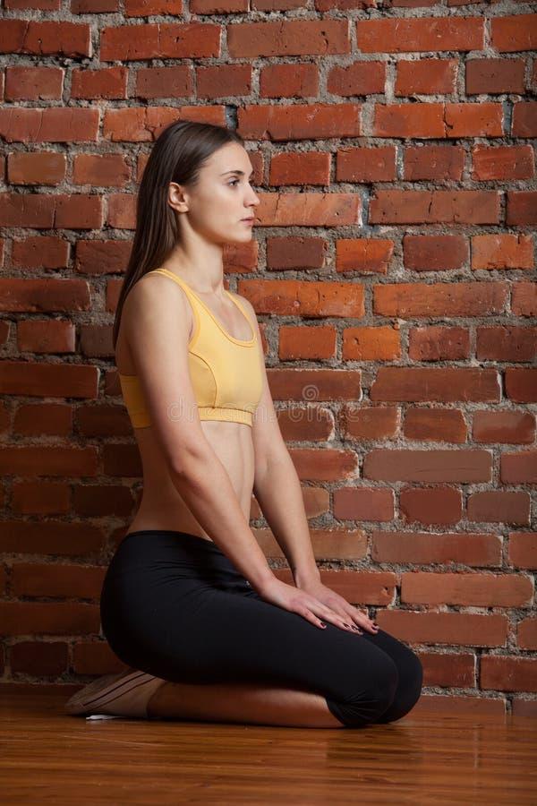 torrie wilson sexy pictures