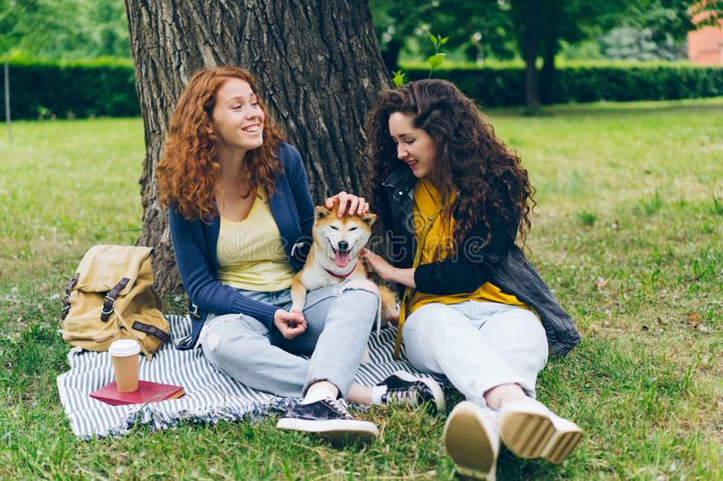 Attractive girls sitting on lawn in park with cute dog talking having fun stock image