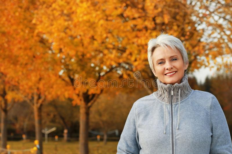 Attractive senior woman in front of autumn leaves. Attractive happy senior woman in front of autumn leaves smiling with grey pullover royalty free stock photos
