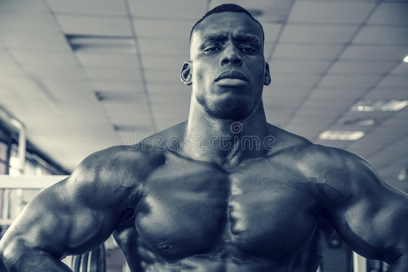 Attractive hunky black male bodybuilder in gym royalty free stock images