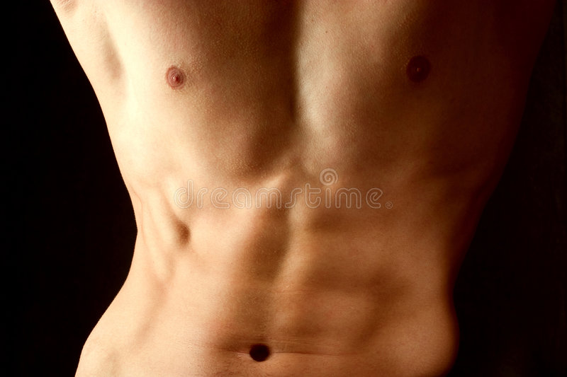 Download Attractive Male Body Royalty Free Stock Photo - Image: 2509435