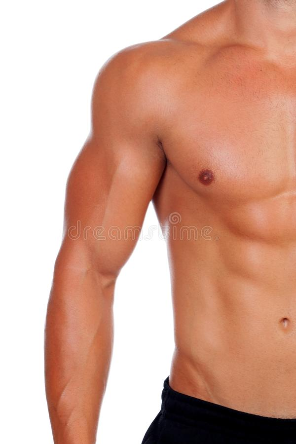Attractive male body showing his muscles royalty free stock images