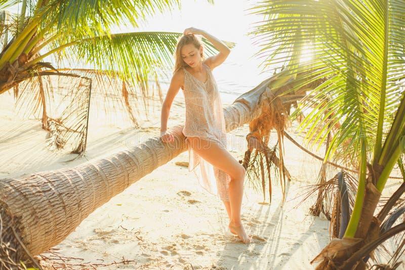 Attractive seductive woman posing near fallen palm tree. On ocean beach stock photos