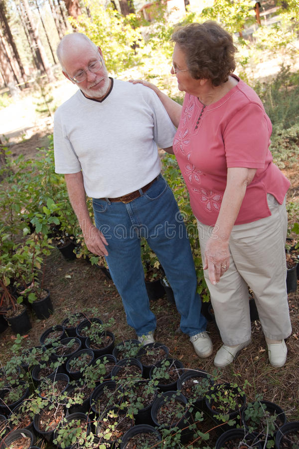 Attractive Senior Couple Overlooking Potted Plants royalty free stock photo