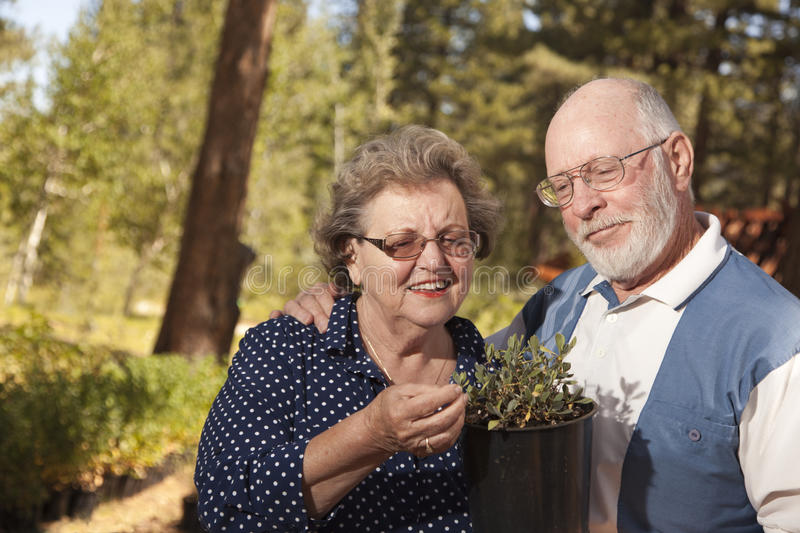 Attractive Senior Couple Overlooking Potted Plants stock photos