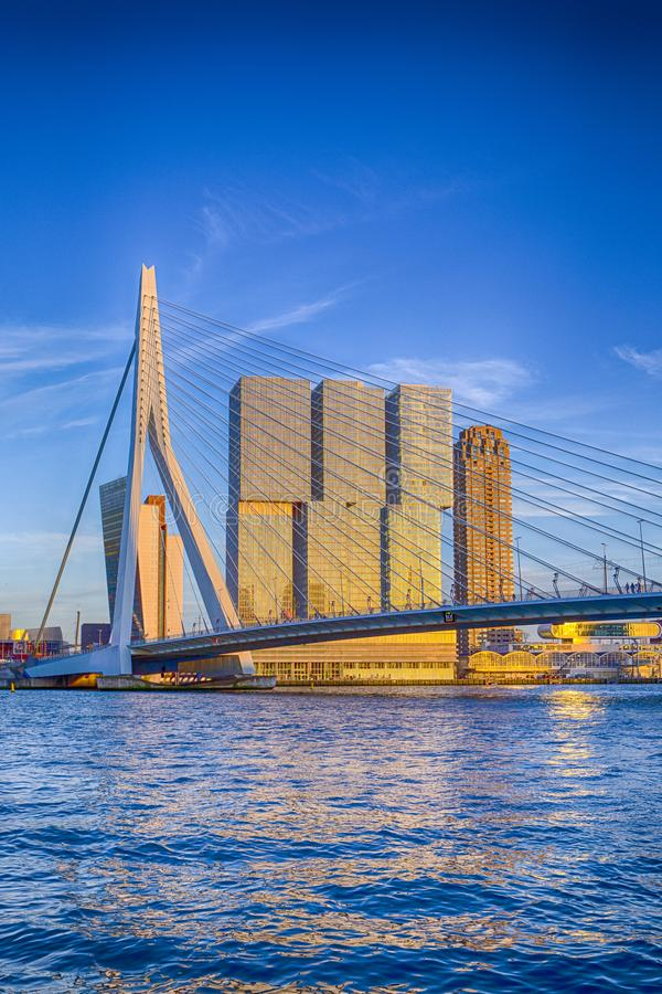 Free Attractive View Of Renowned Erasmusbrug Royalty Free Stock Photography - 120691957
