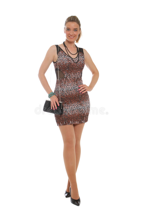 Download Attractive Woman In Animal Print Dress Stock Photo - Image: 21780118