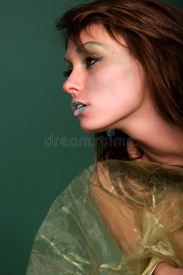 Attractive woman in silk. Attractive woman wrapped in silk fabric stock images