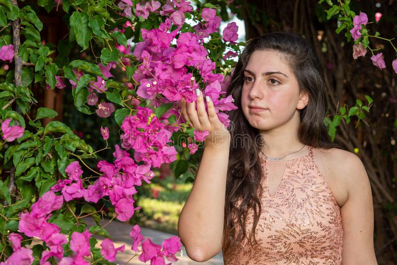 Attractive young beautiful lady, enjoying the pink blooming  flowers. Concept of welcoming Spring stock images