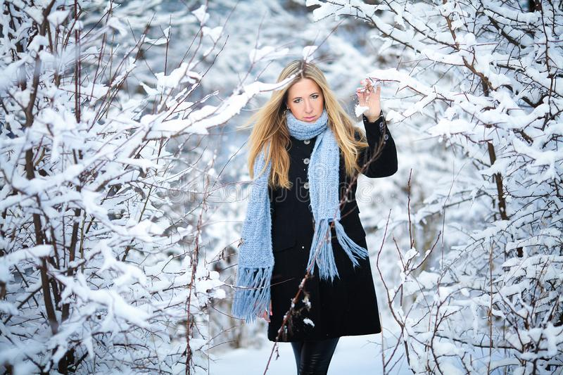 Attractive young blonde girl walking in winter forest. Pretty woman in wintertime outdoor. Wearing winter clothes. stock image