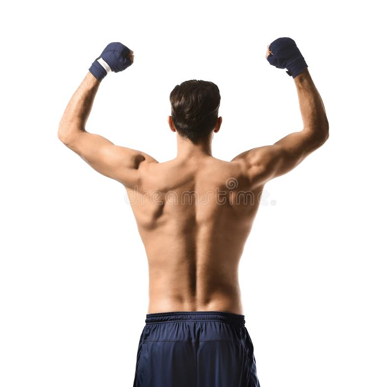 Attractive young boxer stock image
