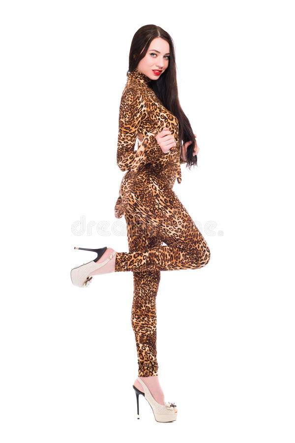 Attractive young brunette royalty free stock photo