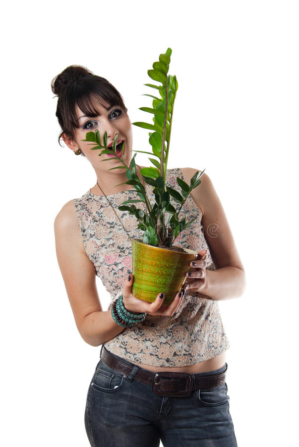 Attractive young woman holding pot with flowers. Isolated on white royalty free stock photo