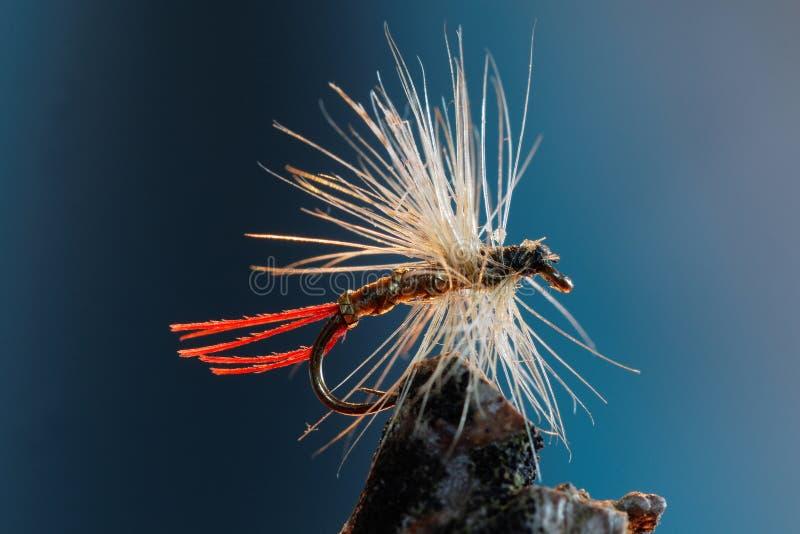Attrait blanc et rouge de pêche de mouche photos libres de droits