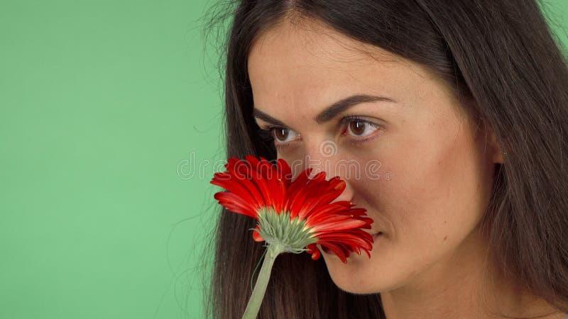 Attraktiv gladlynt kvinna som luktar en blomma och le royaltyfri foto