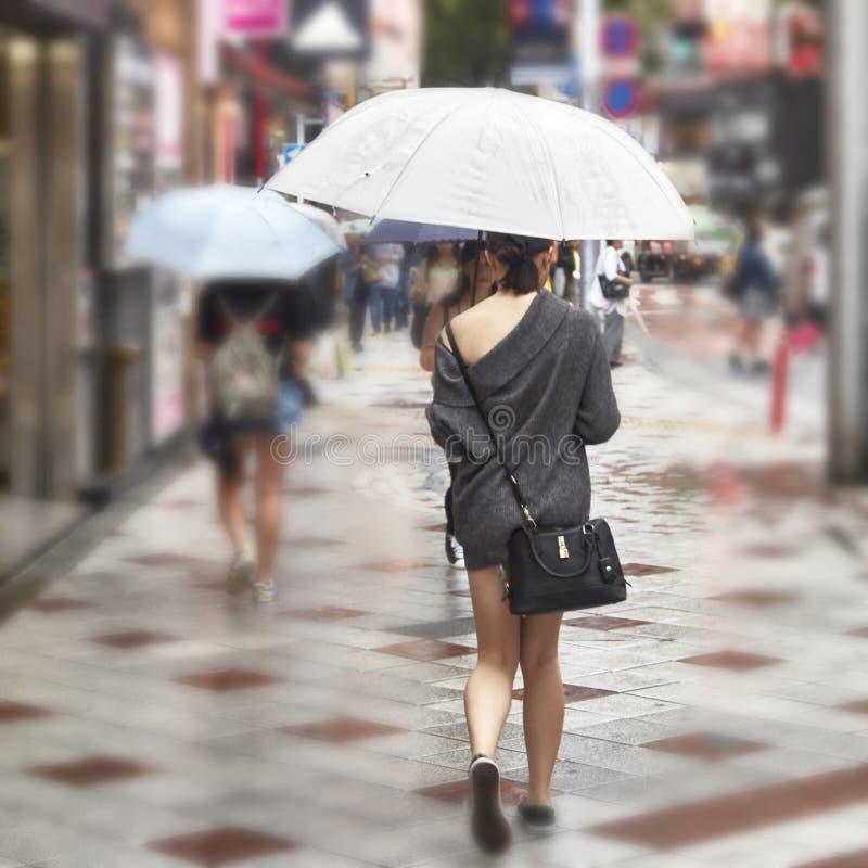 Attraktiv härlig dam att rymma ett paraply arkivbilder