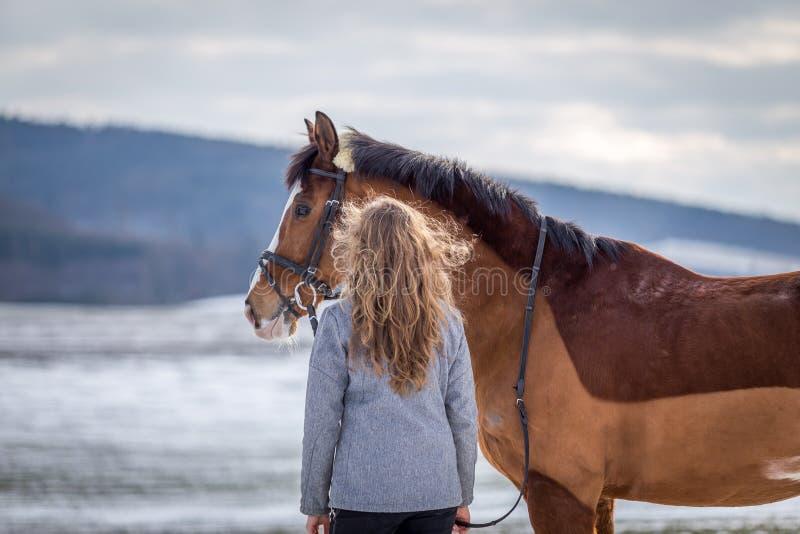 Attraktiv ung flicka som ser på hennes häst i det snöig fältet arkivbild