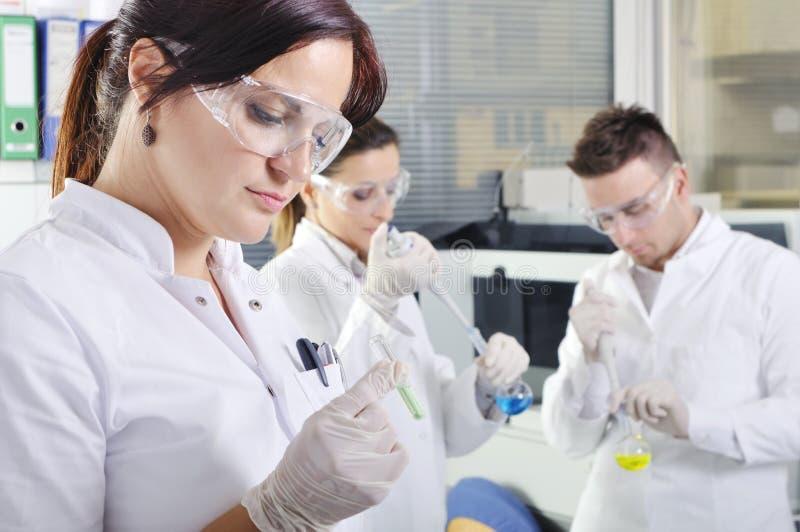 Attraktiva unga doktorsgradstudentforskare i laboratoriumet royaltyfria bilder