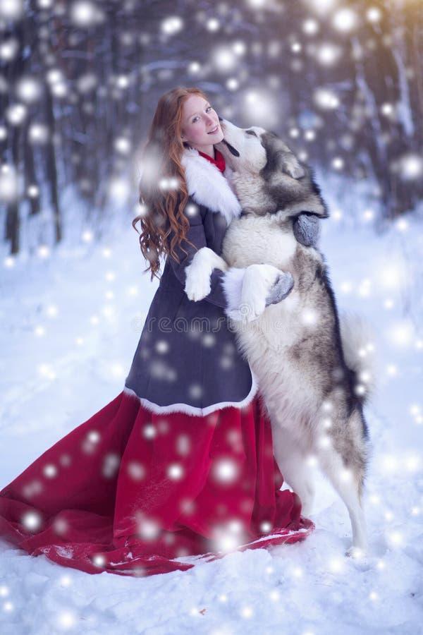 Attraktive Frau mit den Hunden Schlittenhunde oder Malamute lizenzfreies stockfoto