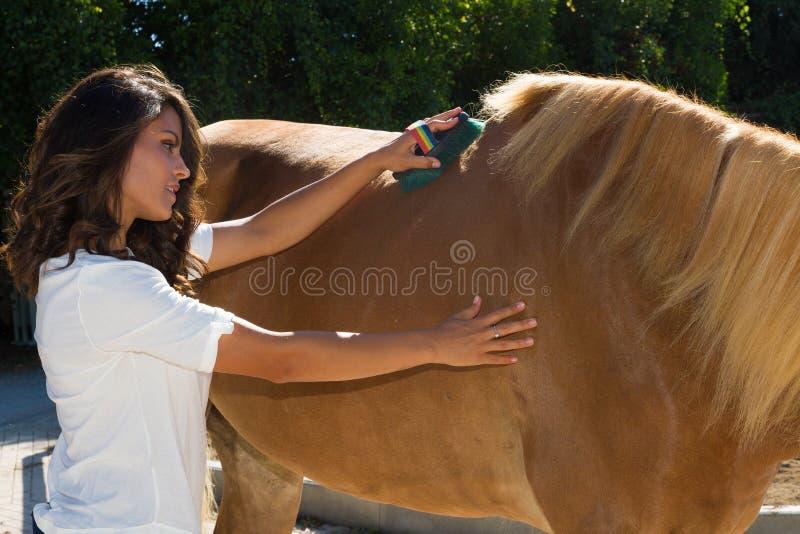Attraktive junge Frau, die ein Pferd an den Ställen pflegt lizenzfreie stockfotos