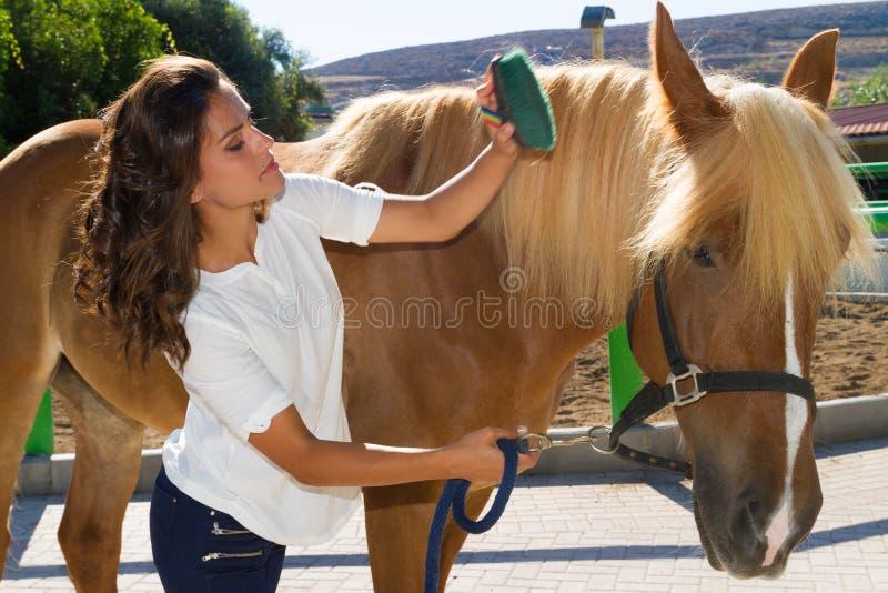 Attraktive junge Frau, die ein Pferd an pflegt lizenzfreies stockbild