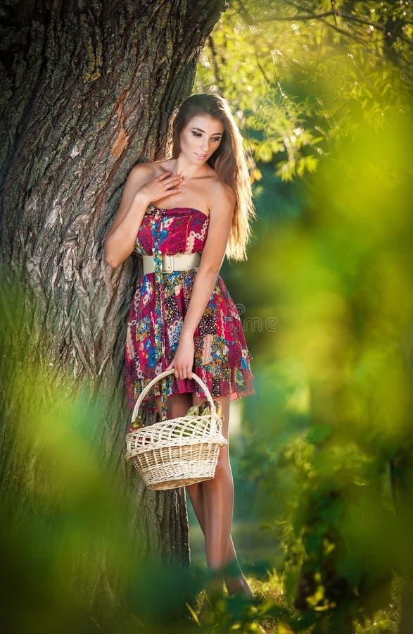 Attraktive junge Frau in einem Sommermodeschuß Schönes modernes junges Mädchen mit Strohkorb im Park nahe einem Baum stockbild