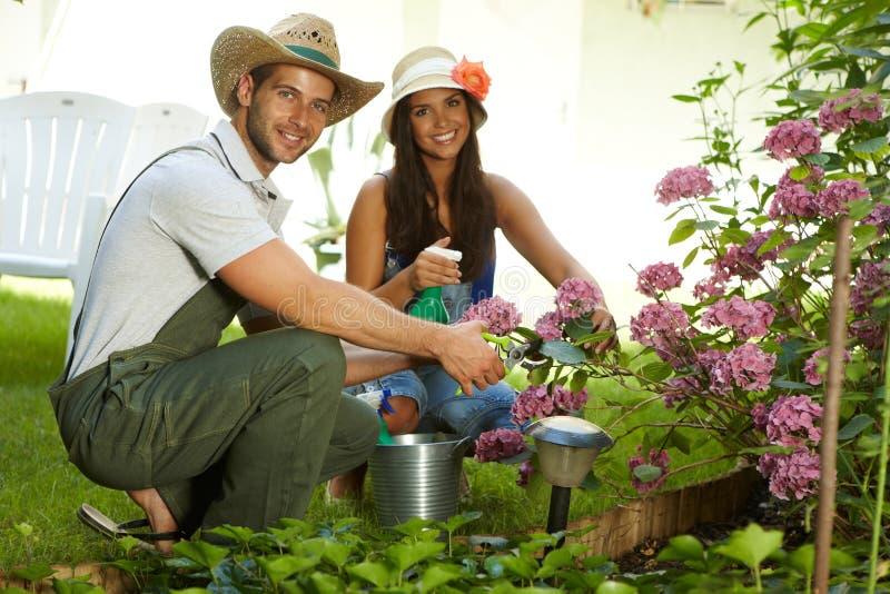 Attraktive junge Paare, die zusammen im Garten arbeiten stockbilder