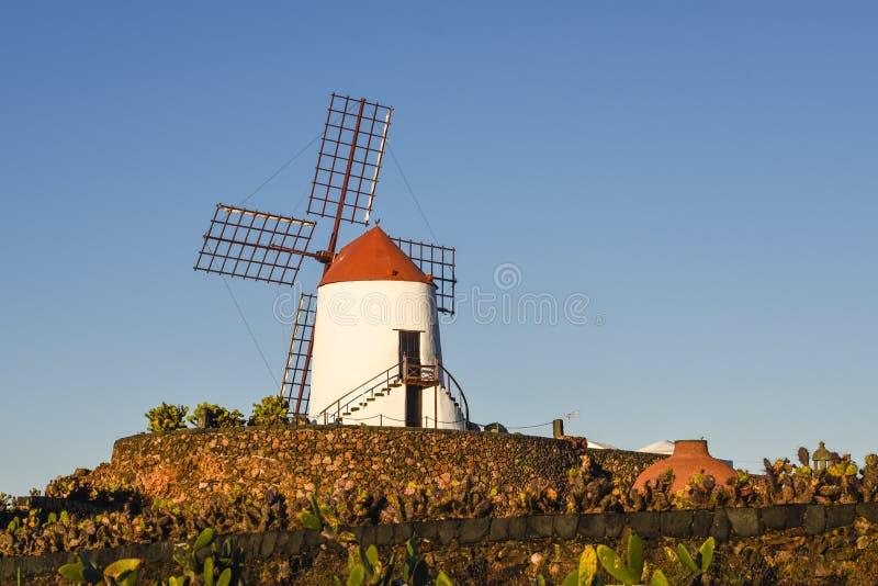 Attraktive Windmühle auf Lanzarote-Insel - eine populäre Touristenattraktion im Kaktusgarten, Guatiza, Kanarische Inseln, Spanien lizenzfreie stockbilder
