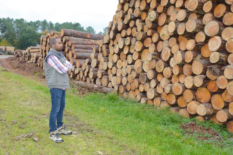 Attraktiver Holzfäller in der Ausnutzung lizenzfreies stockbild