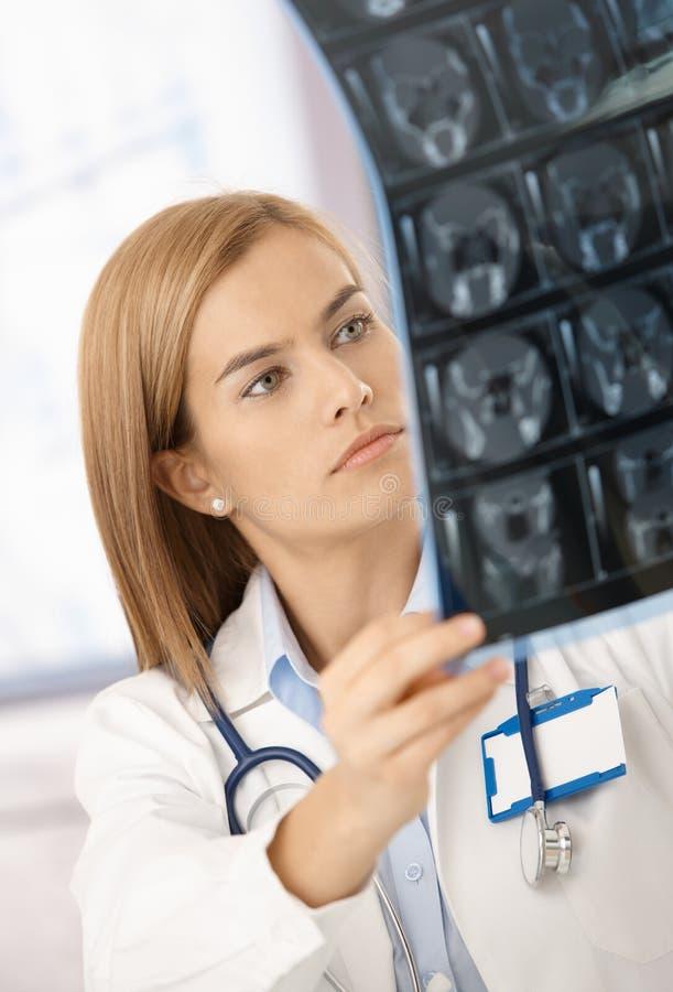 Attraktiver Radiologe, der Röntgenstrahlbild analysiert lizenzfreie stockfotografie