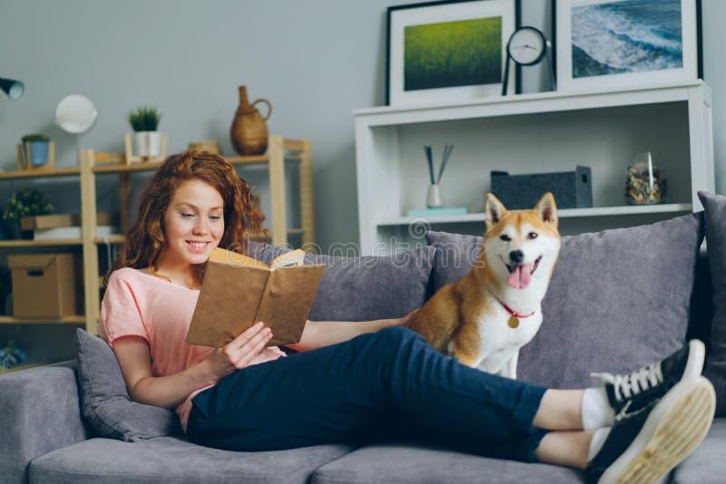 Attraktives Mädchenlesebuch und Streichen von shiba inu Welpen auf Couch in der Ebene lizenzfreie stockbilder