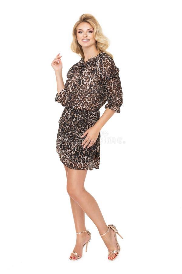 Attraktives Mode-Modell trägt ein Geschäftskleid im Studio und im Lächeln lizenzfreies stockfoto