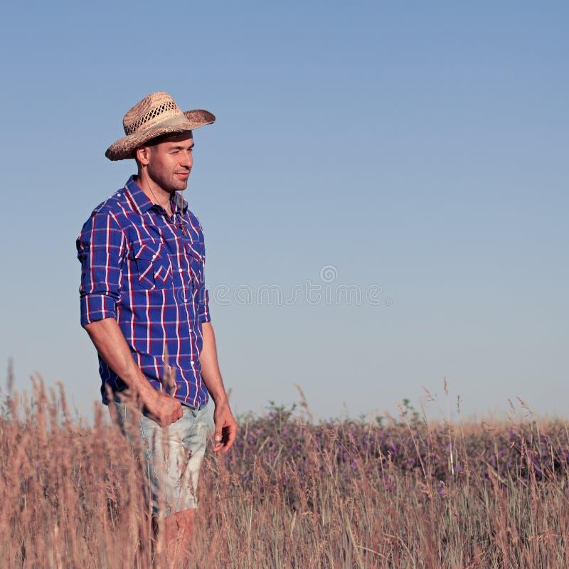 Attraktivt anseende för ung man i ett fält cowboy royaltyfria bilder