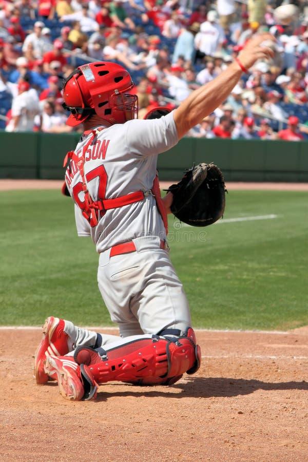 Attrapeur Bryan Anderson de cardinaux de MLB St Louis images libres de droits