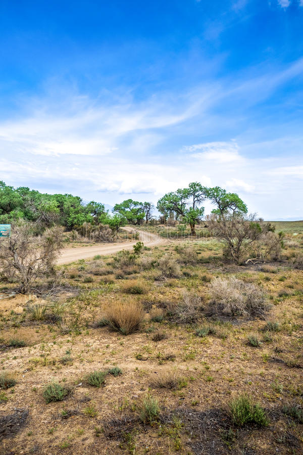 Attraverso il deserto del cespuglio fotografia stock libera da diritti