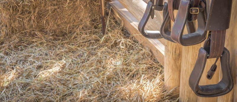 attrezzatura del cavallo da equitazione immagine stock