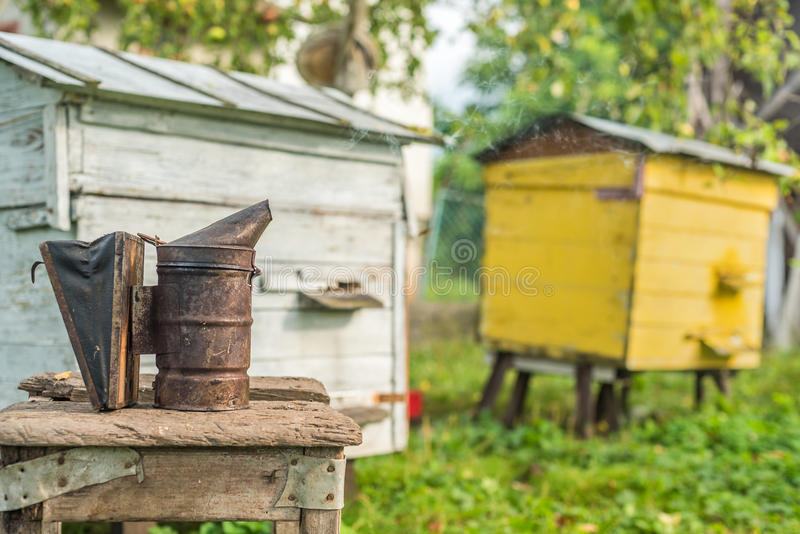 Attrezzatura di apicoltura - fumatore dell'ape, processo di ottenere miele, possedere sicurezza immagine stock libera da diritti