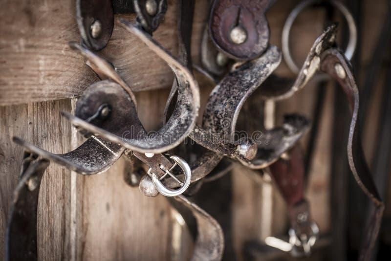 Attrezzatura di equitazione fotografie stock