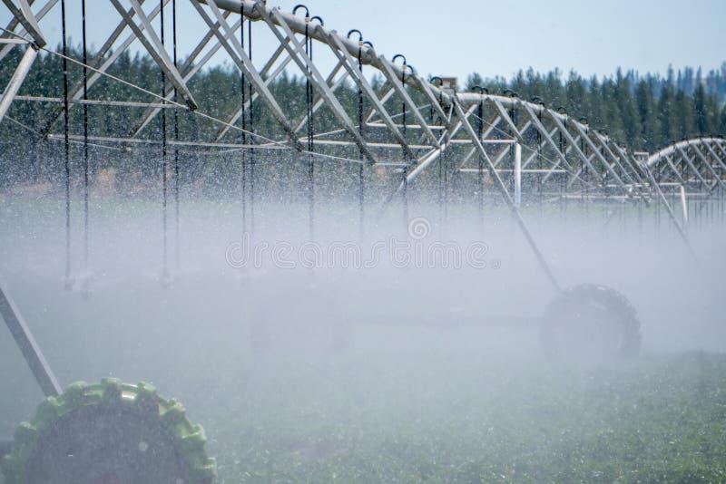 Attrezzatura di irrigazione sul campo dell'azienda agricola il giorno soleggiato immagine stock libera da diritti